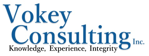 vokeyconsulting.com